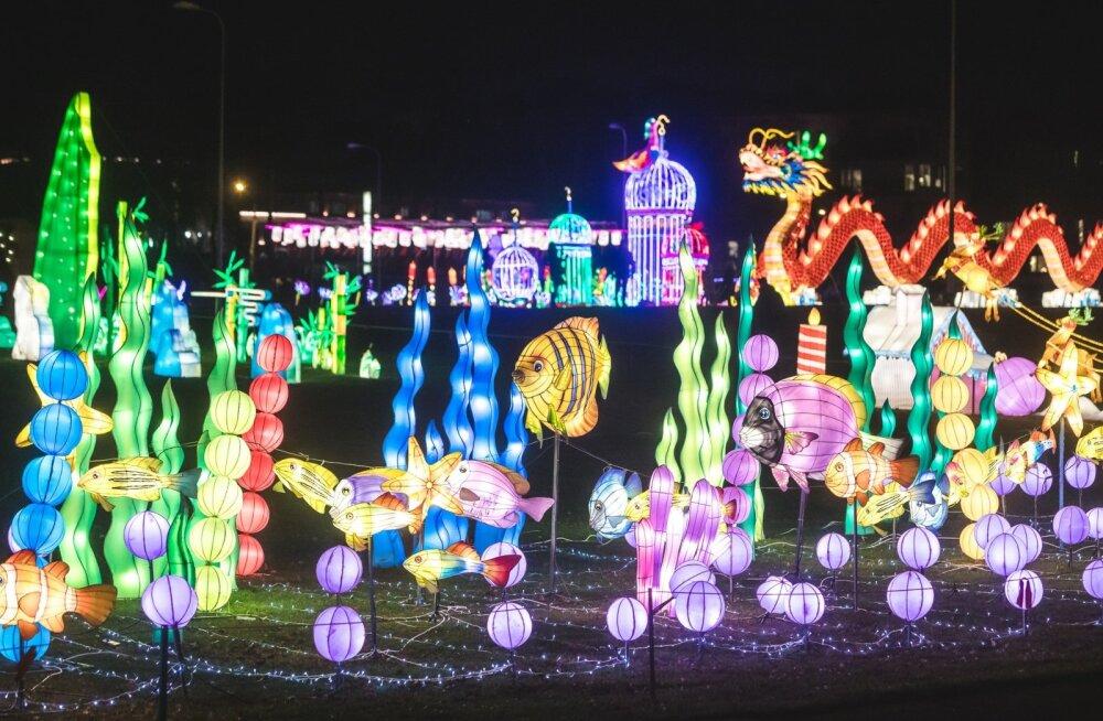 Число посетителей фестиваля азиатских фонарей в Таллинне сравнялось с населением Сааремаа