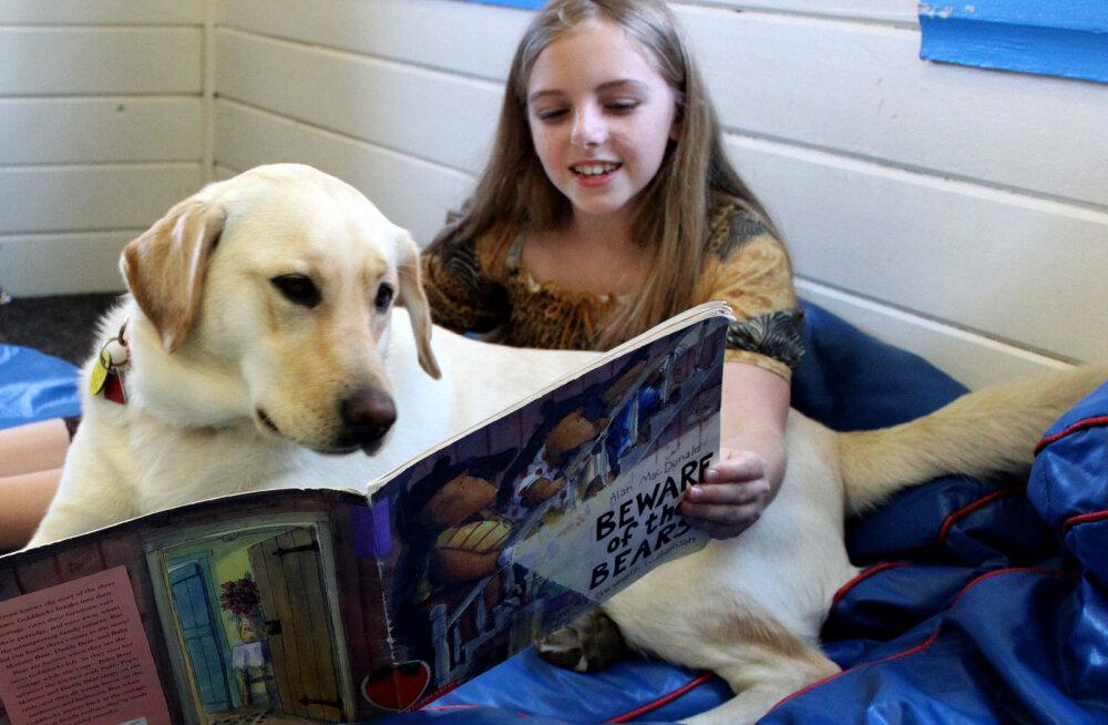 TARGAD LOOMAD | Kas koer saab tõesti meie jutust aru?