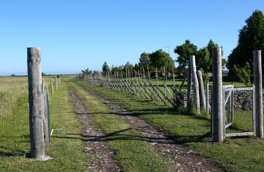 Aasta küla 2013 rahvahääletusel Karala küla, Saaremaal