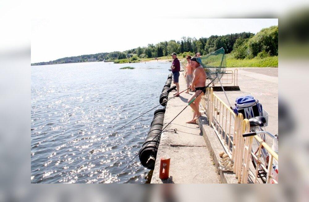 Narva-Joesuu, kaluripäev