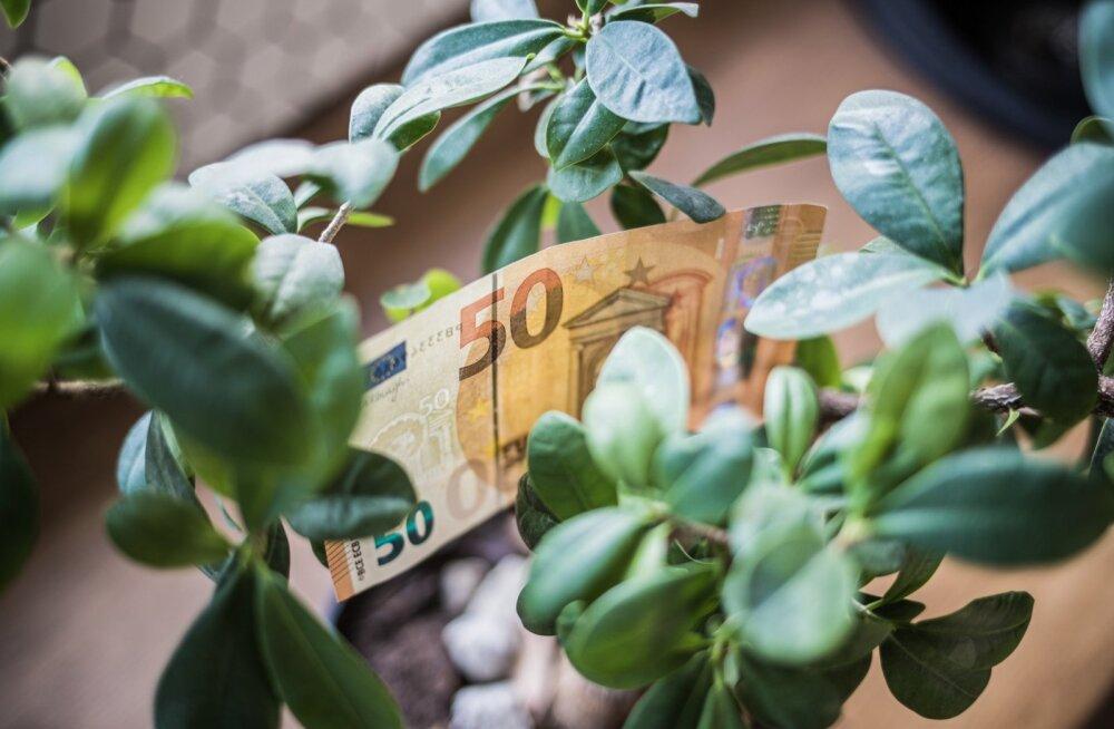 Rahapuu