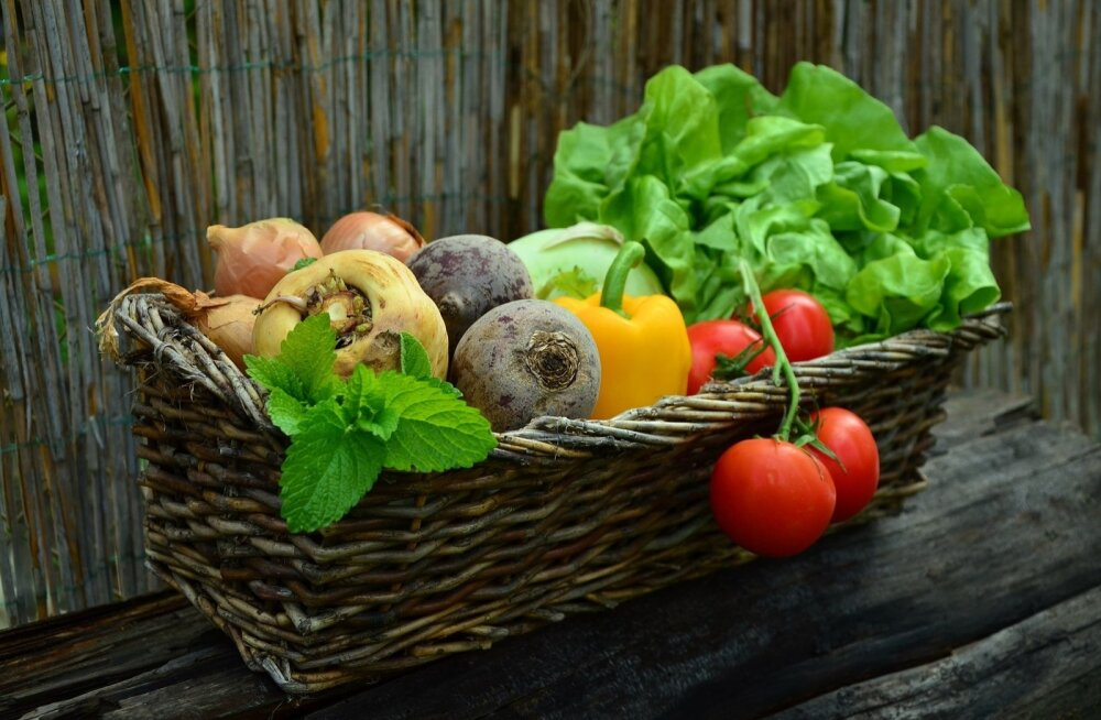 Parim saak tuleb vaid viljavaheldust järgides.