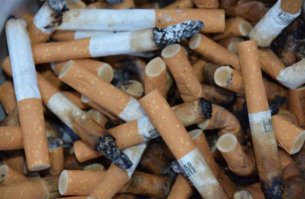 Vähkkasvajad, kopsuprobleemid, südamehäired: kas teadsid, kuidas mõjub passiivne suitsetamine sinu lemmikule?