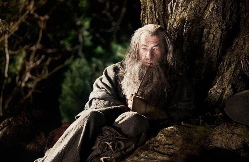 """Kas teadsid, miks loobus Sir Ian McKellen """"Harry Potteri"""" seeria Dumbledore'i rollist?"""