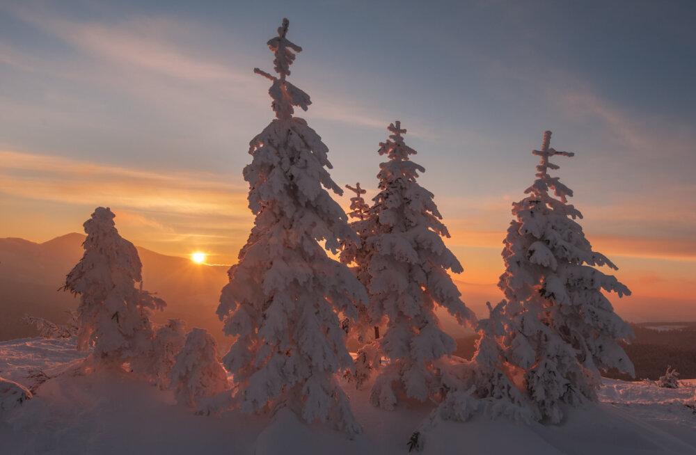 Täna on talvine pööripäev: maagiline aeg ja aasta oluline pöördepunkt