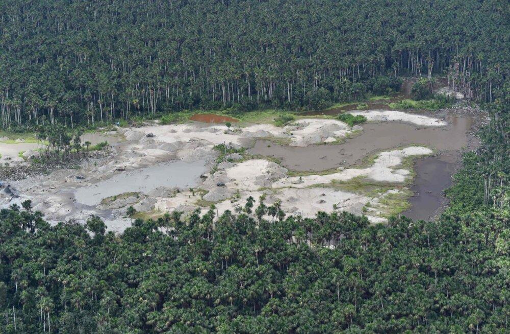 Täielikust õnnest on puudu 1,200,000,000,000 puud