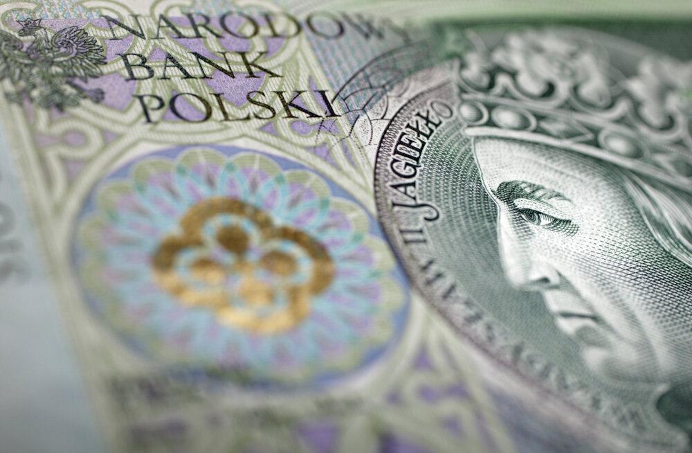 Tänavune Euroopas suurima tõusu teinud valuuta võib veelgi kallineda