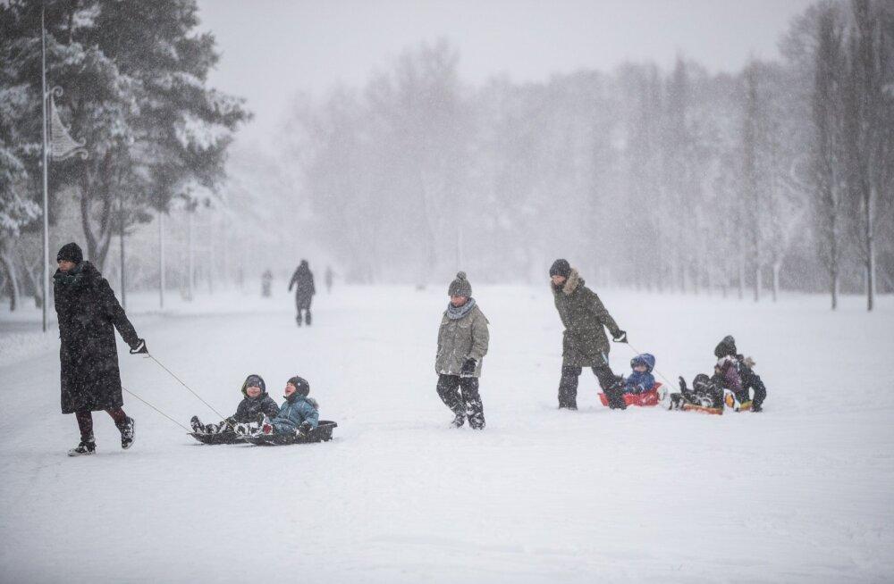Lumi Tallinnas