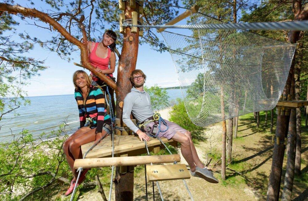 Ülevaade parimatest seiklusparkidest Eestis