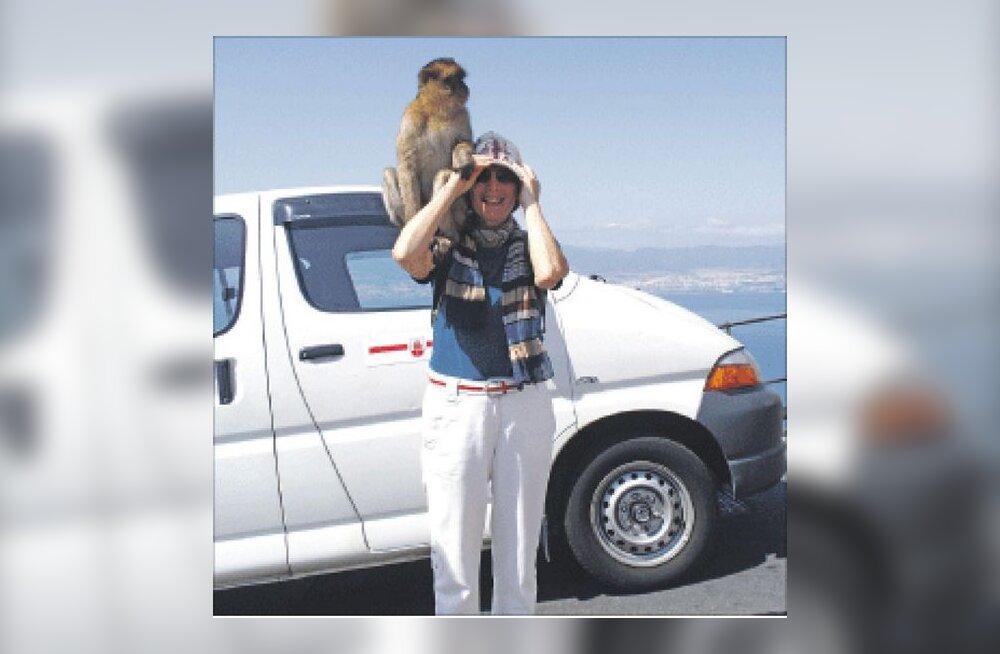 Taksoga kaljuveerel, roolis makaak