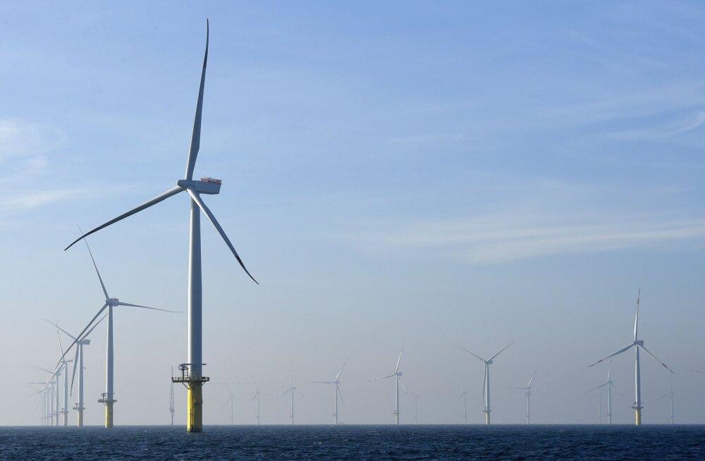 Hiidlased jonnivad tuulepargi kallal