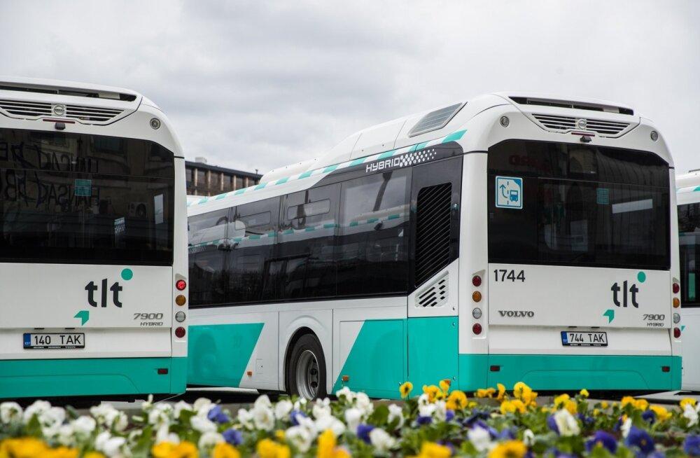 Bussiliinid 3 ja 52 suunatakse ümbersõidule