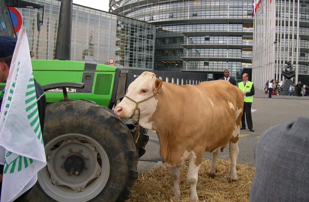 Europarlament on Strasbourgis Prantsusmaal olnud korduvalt ka põllumeeste meeleavalduste sihtmärgiks.