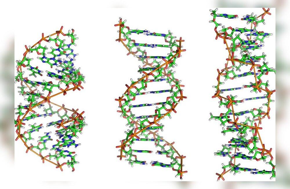 Meie geenid on loetavad, aga küsimärke jätkub endiselt