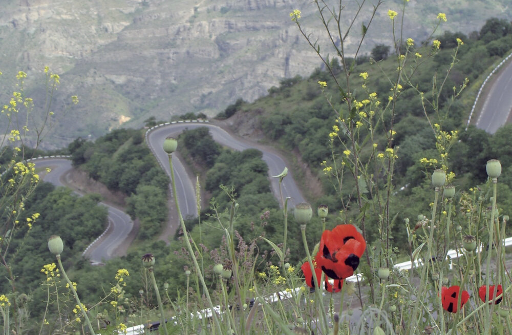Minu Armeenia:lihtne võimalus end surnuks süüa
