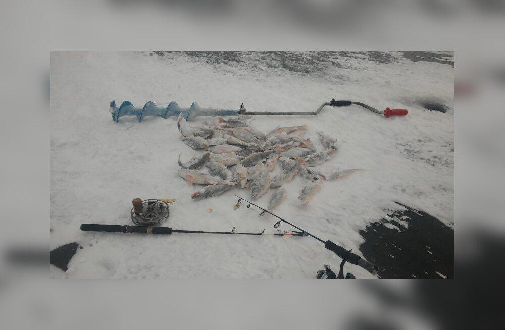 MEIE MAA | Jääolud talvist kalapüüki ei soosi