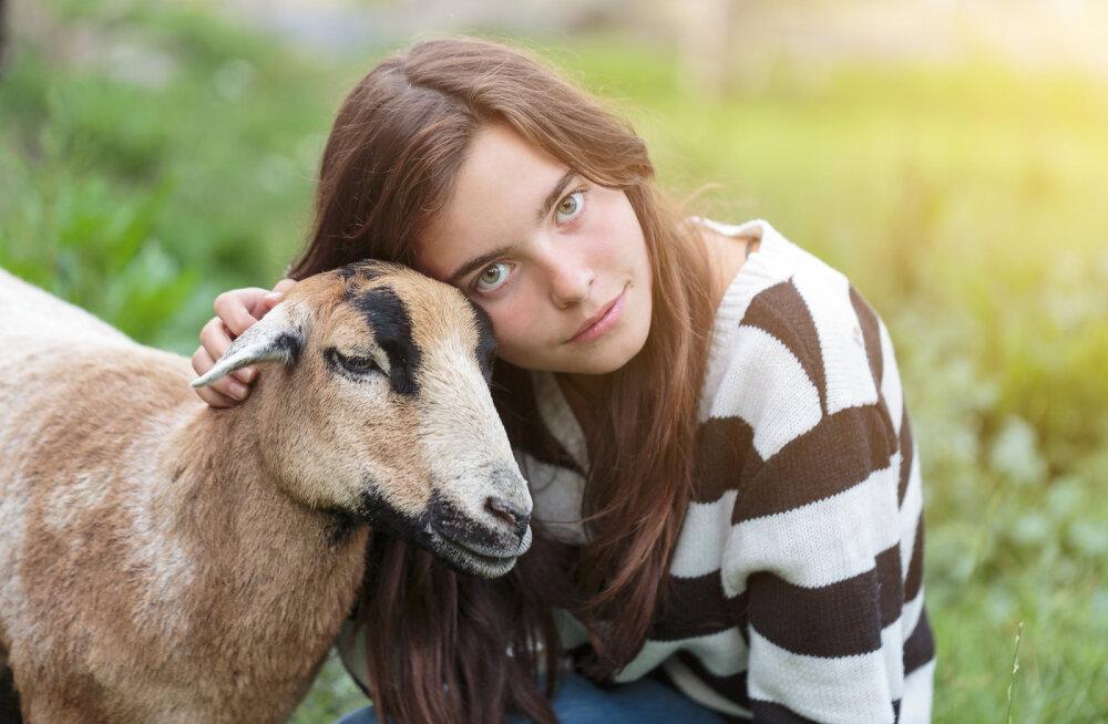 Vegan väljakutse: kuu aega loomse toiduta