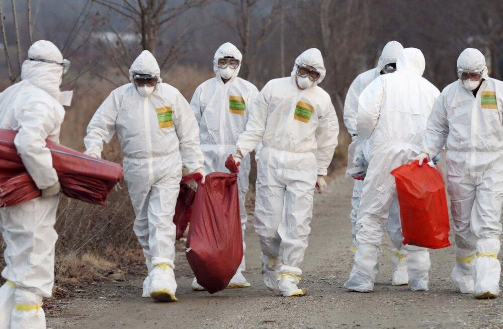 Lõuna-Korea on sunnitud olümpia lähedal korraldama loomade tapatalguid