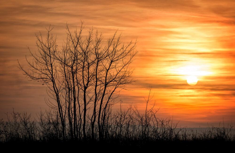 Novembrikuu energiad: Transformatsioon jätkub ja käesolev kuu loob suurepärased tingimused vaimseks ärkamiseks