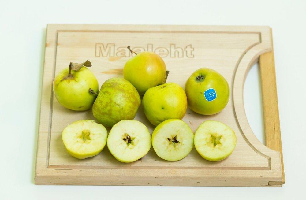 Lugeja uurib: kas poes müüdavad rohelised õunad on ikka õiged 'Liivi kuldrenetid'?