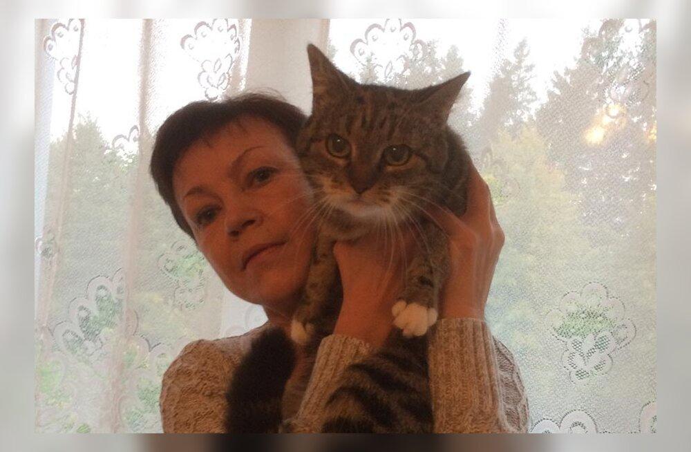 Хозяйка кошки недоумевает, почему изъяли из продажи лекарство, а аналогов ему нет?