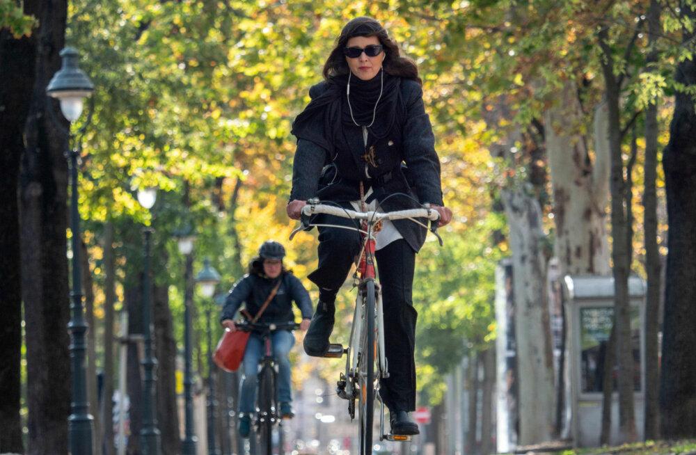 Бесплатно попасть в музеи Вены смогут те, кто ездит на велосипеде