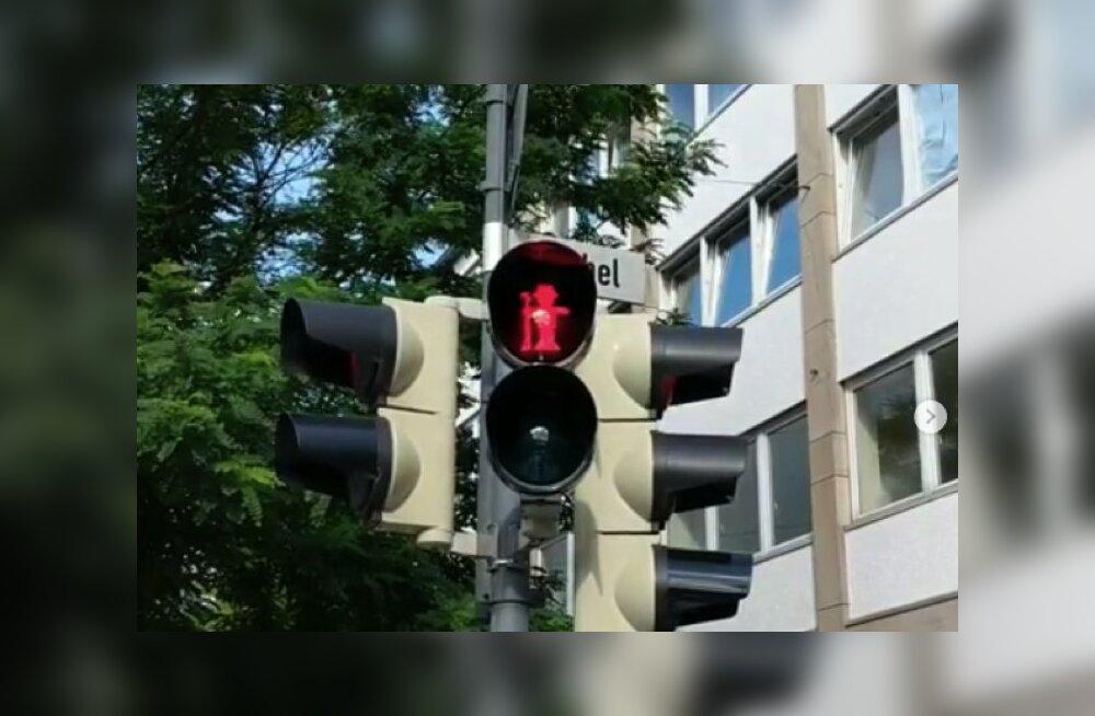ФОТО: В немецком городе на светофорах появился человек с ружьем