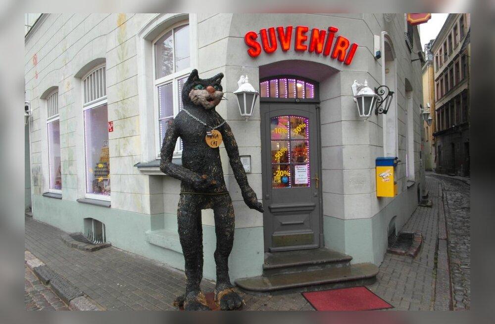 ФОТО читателя Delfi: Рига - город котов?