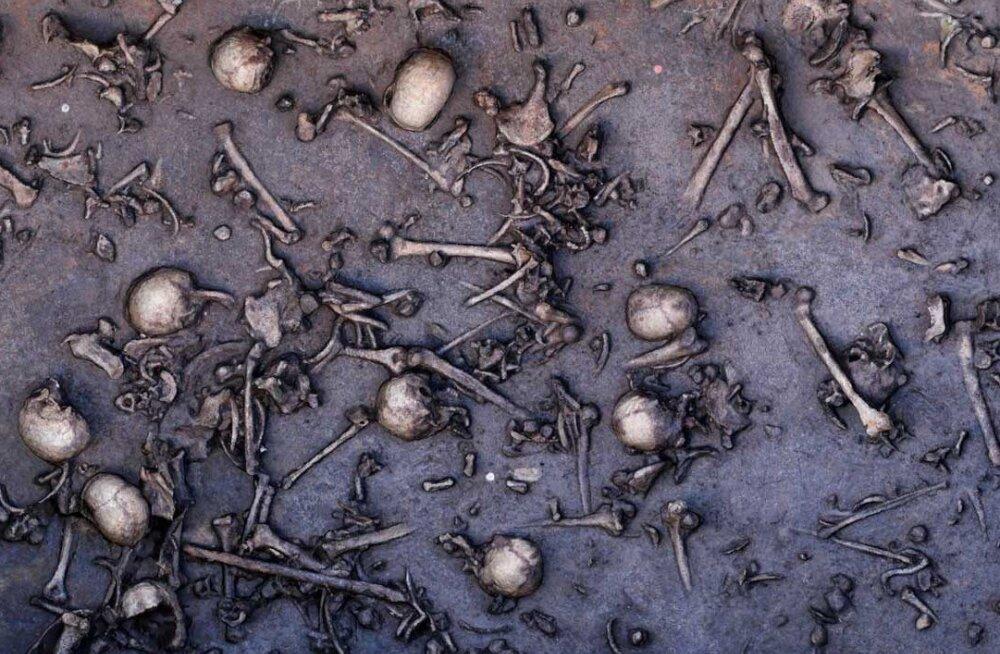 Nüüd vist teame, kus toimus päris esimene lahing Põhja-Euroopa ajaloos