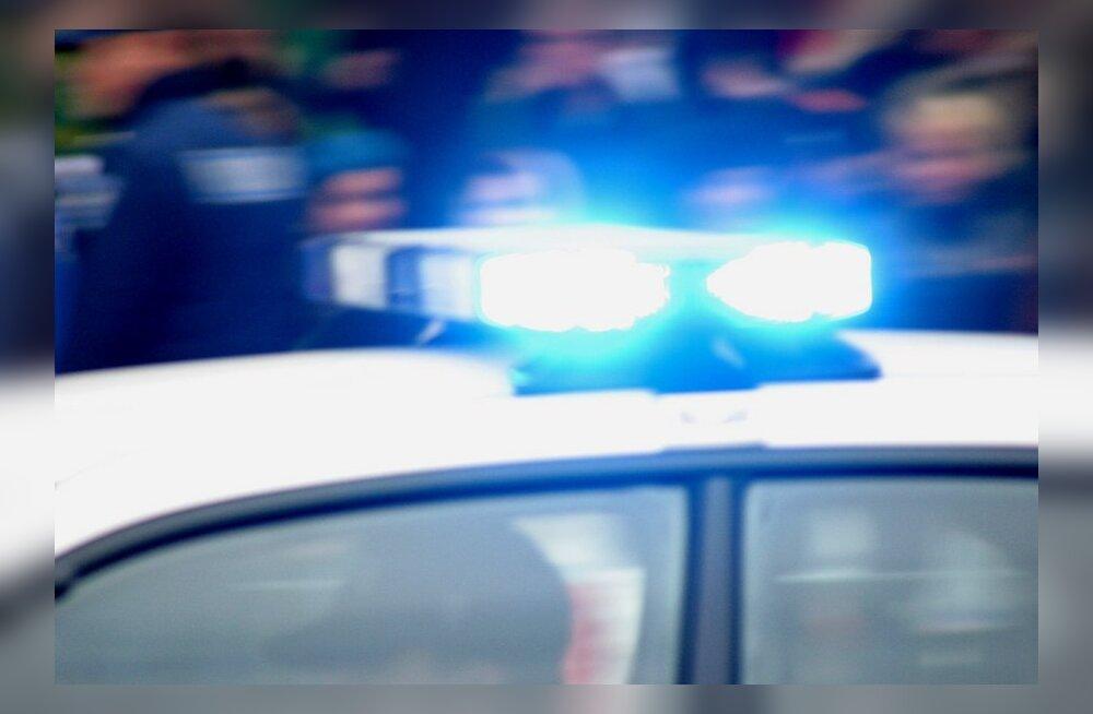 Politsei palub abi Loviise Sääduse leidmisel