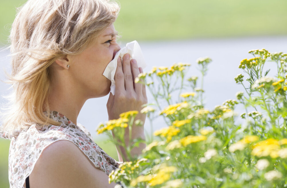 Nõid Anete kirjanurk: millest kõneleb sinu allergia?