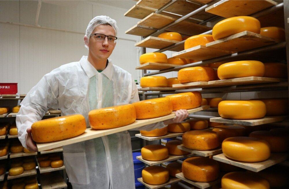 Nopri talu noorem perepoeg Joonas on juustutootmise arendamise oma südameasjaks võtnud.