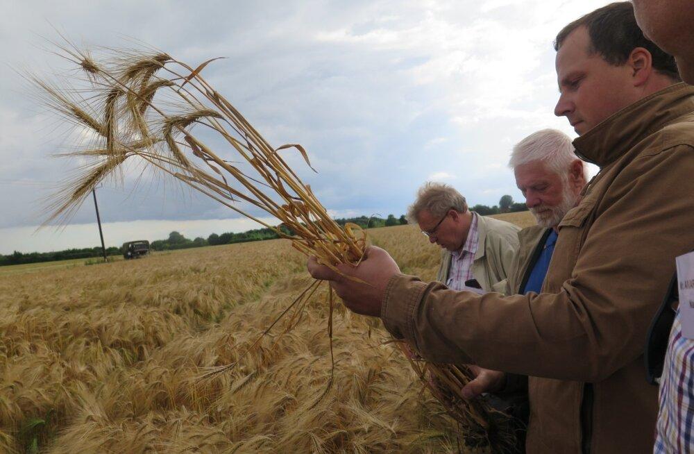 Mitmeid YENi kontakttaludest külastasid Eesti viljelusvõistluse parimad 2015. aastal.