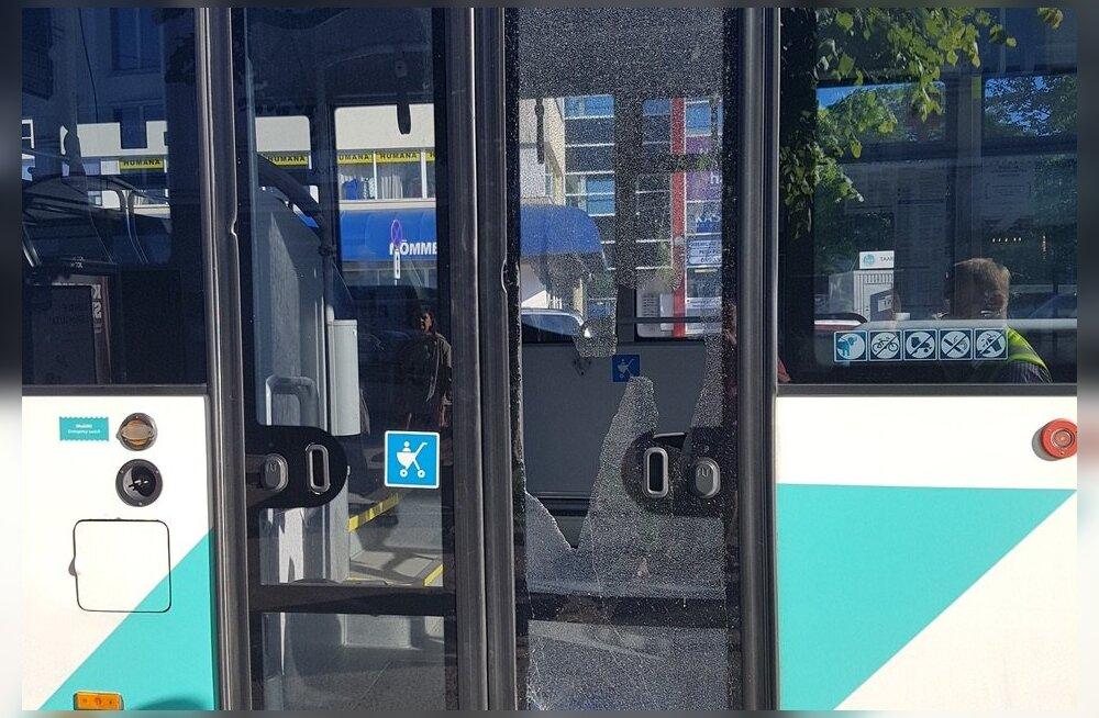 Разбитая дверь автобуса и опрокинутые полки в магазине. Самые частые и неожиданные страховые случаи с детьми в Эстонии