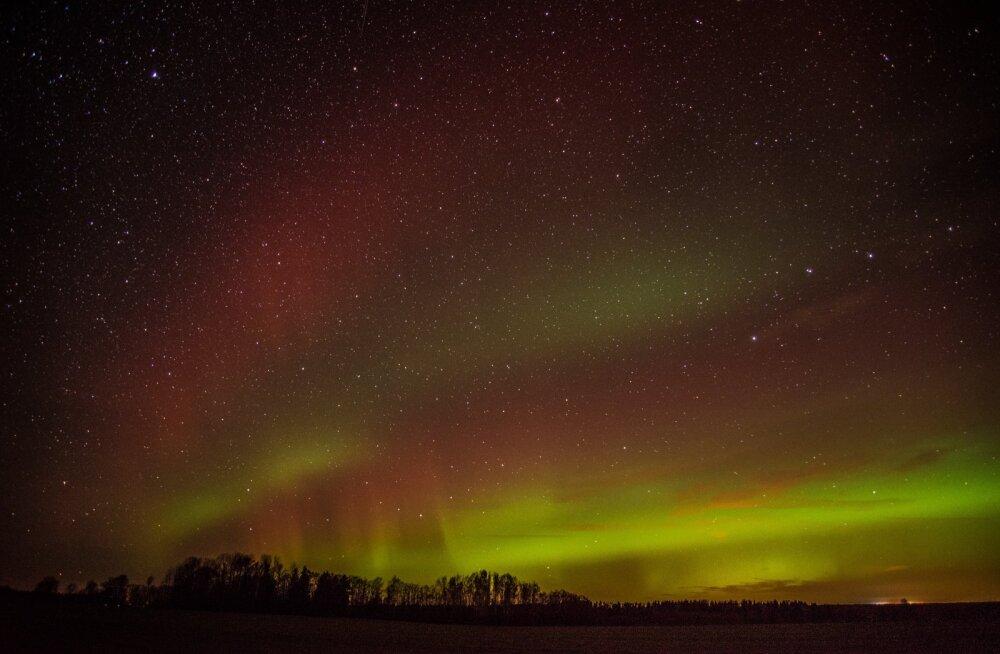 ВИДЕО | В Канаде запустили онлайн-трансляцию северного сияния