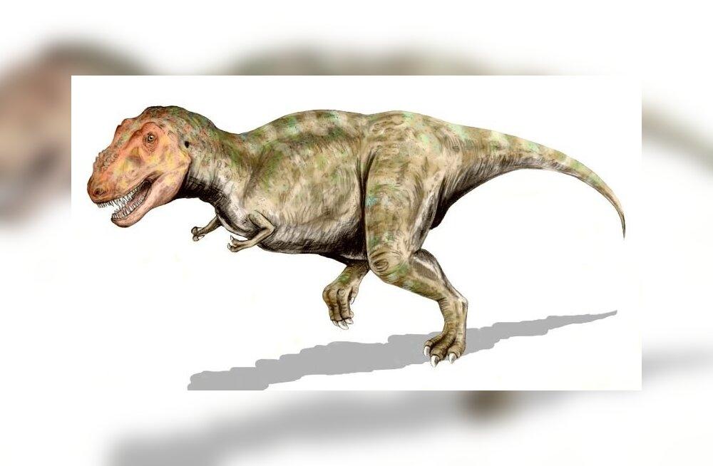Tyrannosaurus rexi tillukesed esijäsemed võisid olla tegelikult tõelised surmarelvad