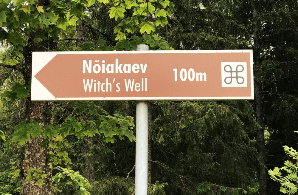 Eestimaa iidsed väepaigad, mis annavad energiat ning toovad tervist ja elujõudu