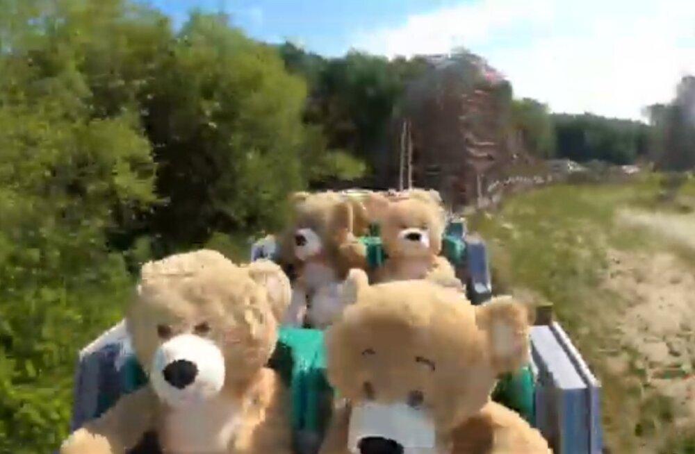 ВИДЕО   В Голландии на американских горках прокатили 22 плюшевых медведей