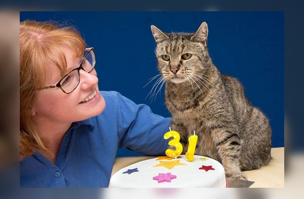 PALJU ÕNNE: Maailma vanim kass sai 31. aastaseks!