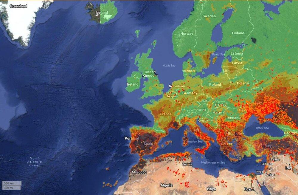 KAART | Euroopa leekides: märkimisväärne osa meie maailmajaost on tulekahjude meelevallas