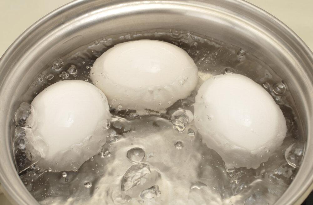 Läheb suuremaks munade värvimiseks? Aga kuidas keeta mune nii, et koor ikka terveks jääks?