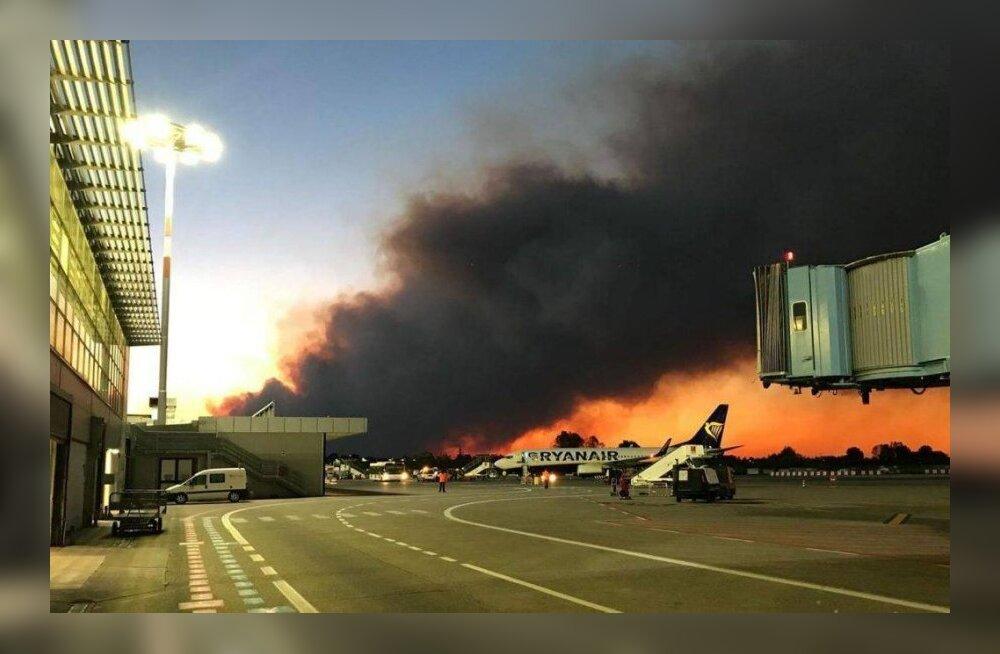 ФОТО: В Италии из-за лесных пожаров закрыли международный аэропорт