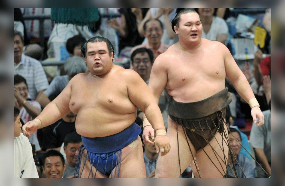 Ozeki Kotoshogiku (vasakul) ja yokozuna Hakuho Fukuokas seni löömatud, sumo