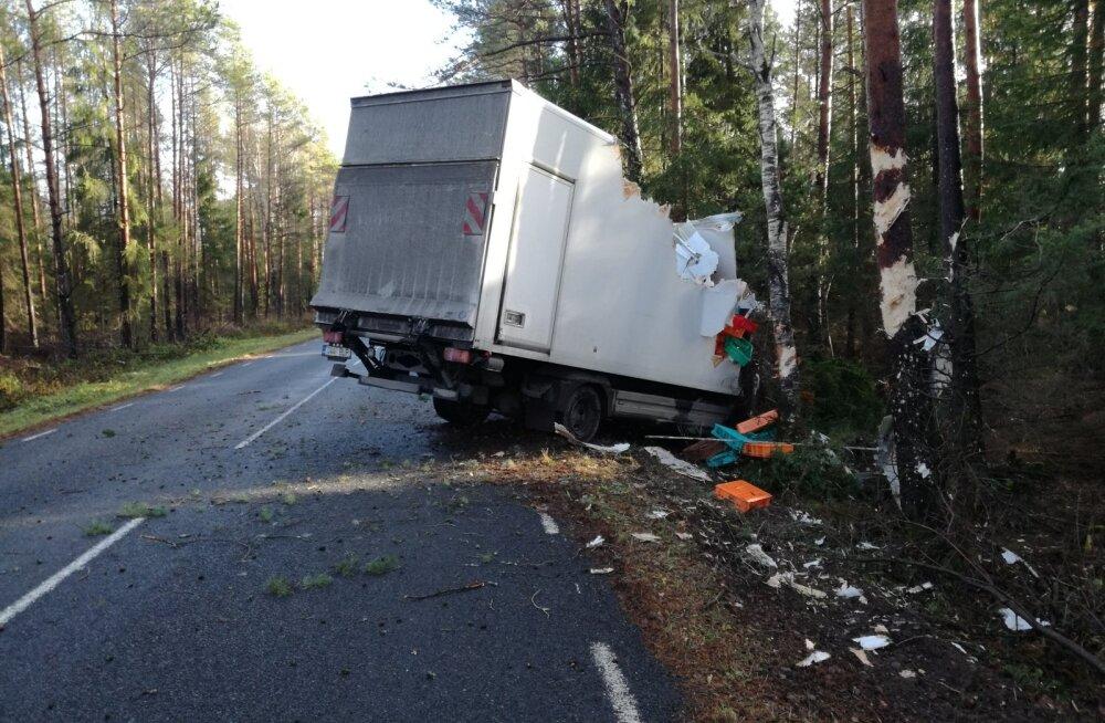 ФОТО: В Рапламаа во избежание столкновения грузовик съехал в кювет