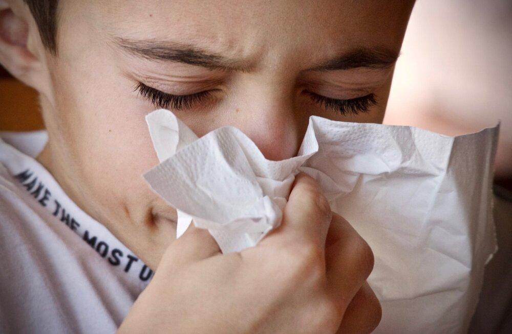 Kui soovid sügisel mitte haigeks jääda, vaata, et su kodus oleksid just need kohad bakterivabad