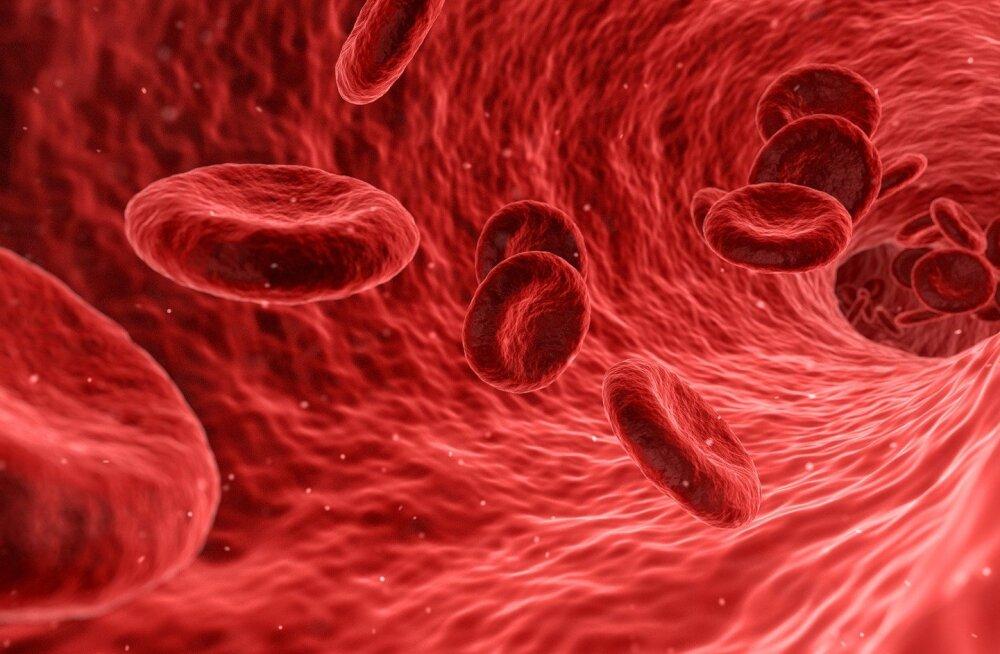 Kas kunstlikud verelibled on looduslikest võimekamad?