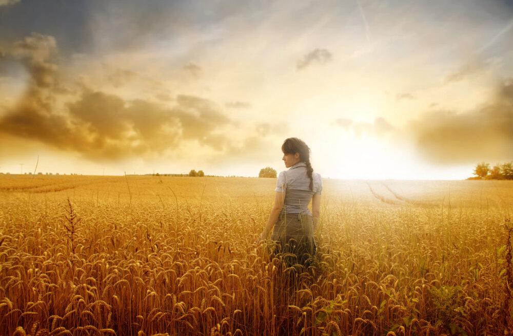 Elu iseendana on kui põllupeenra harimine