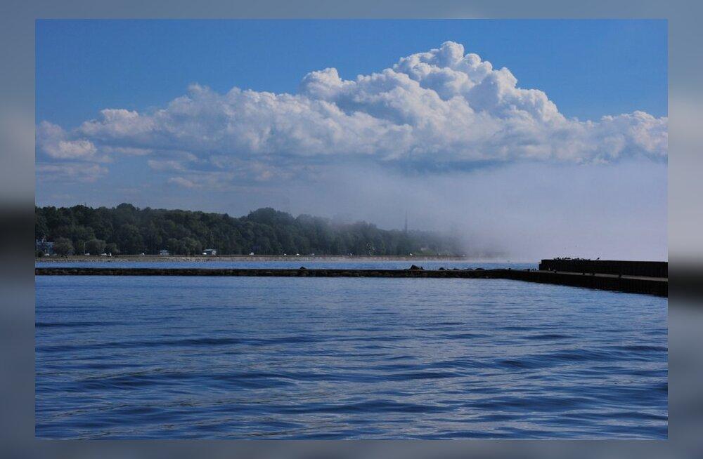 ФОТО читателя Delfi: Туман с моря полностью поглотил Таллинн