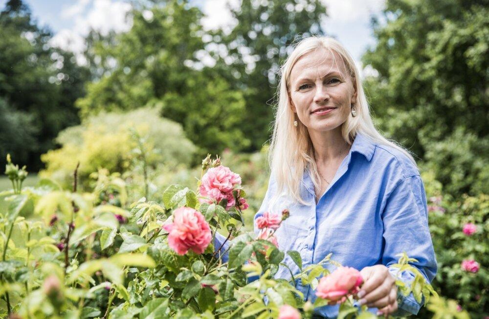 Katrin Ruitlane-Rütli kasvatab oma aias ligi tuhandet roosi. Eri toitudesse sobivad erinevad sordid.