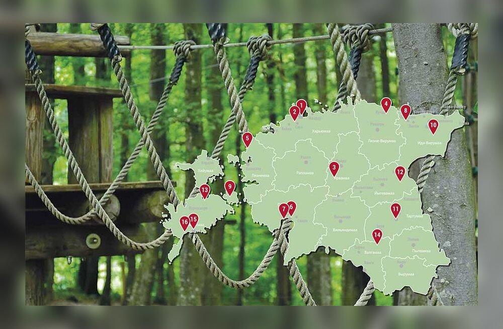 ТОП-16 эстонских парков приключений, где можно провести активный выходной с детьми